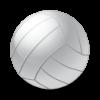 volleyball 100